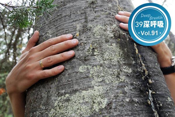 每天撞一撞,活到九十九?医生直截了当:撞树养生不科学!