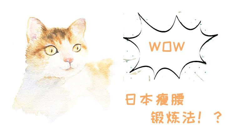 日本瘦腰锻炼法又上热搜!一分钟减肥法和猫咪减肥法,猫咪听到都惊呆了!