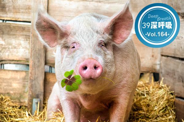"""30一斤的猪肉,被列为可能致癌物:""""猪肉自由""""为什么"""