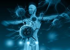 利用自身免疫系统控制肿