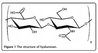 透明质酸分子式 玻尿酸(hyaluronic acid,HA)也就是透明质酸。