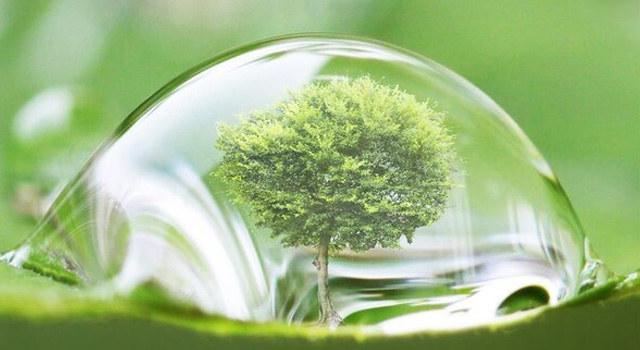 为啥要买绿化好的小区?PNAS告诉你