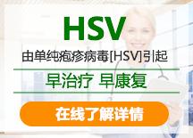 HSV病毒