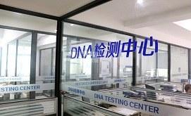 DNA鉴定中心